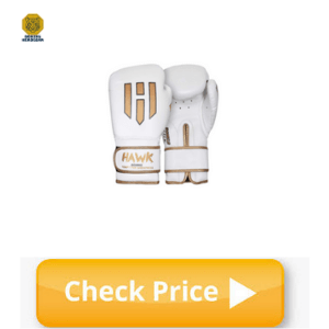 Hawk Gloves for Heavy Bag