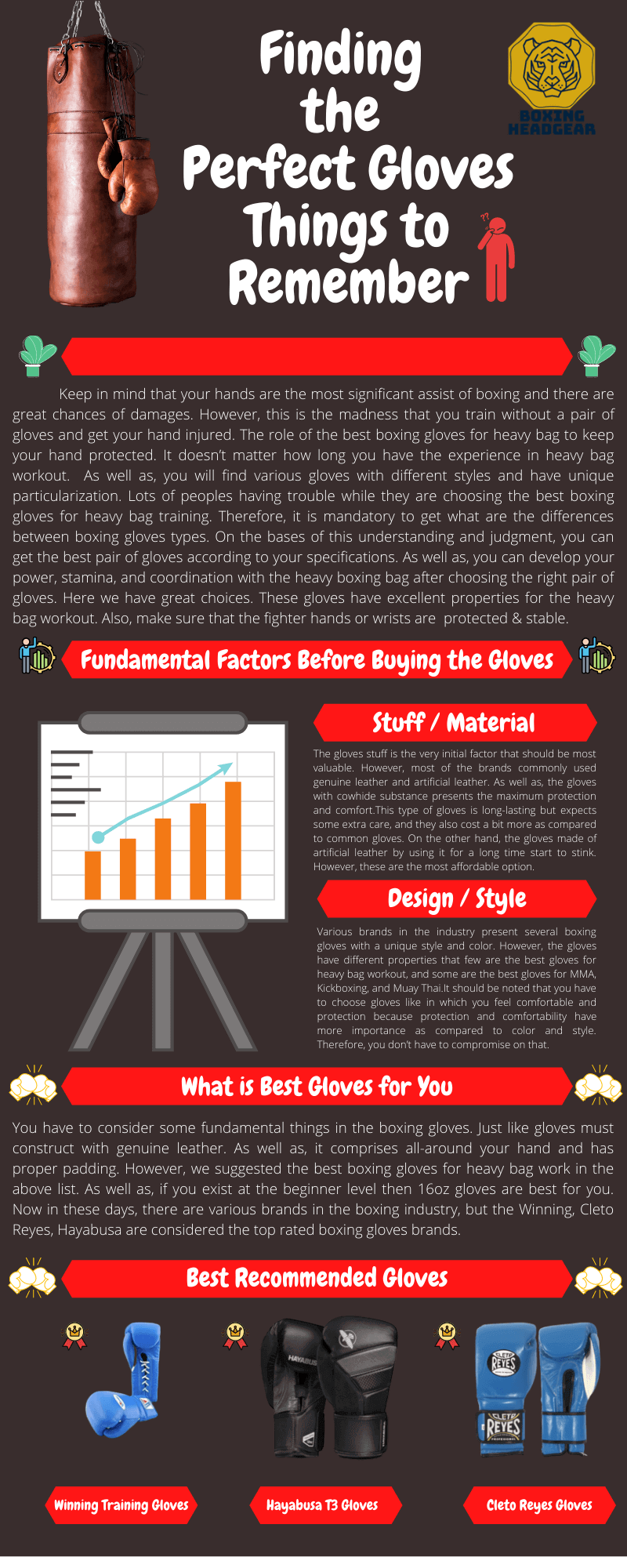 Heavy Bag Boxing Gloves Infographic