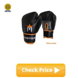 Meister Boxing Gloves for Beginner