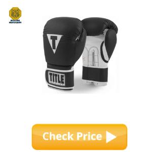 Best Boxing Gloves for Beginner