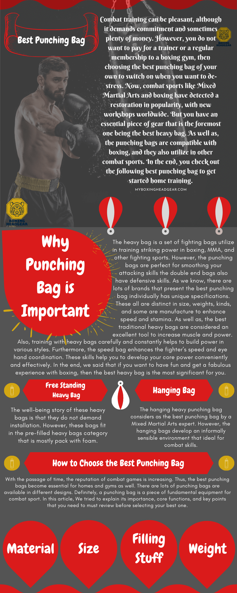 Infographic-Best punching Bag